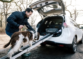 nissan_x_trail_4dogs_4